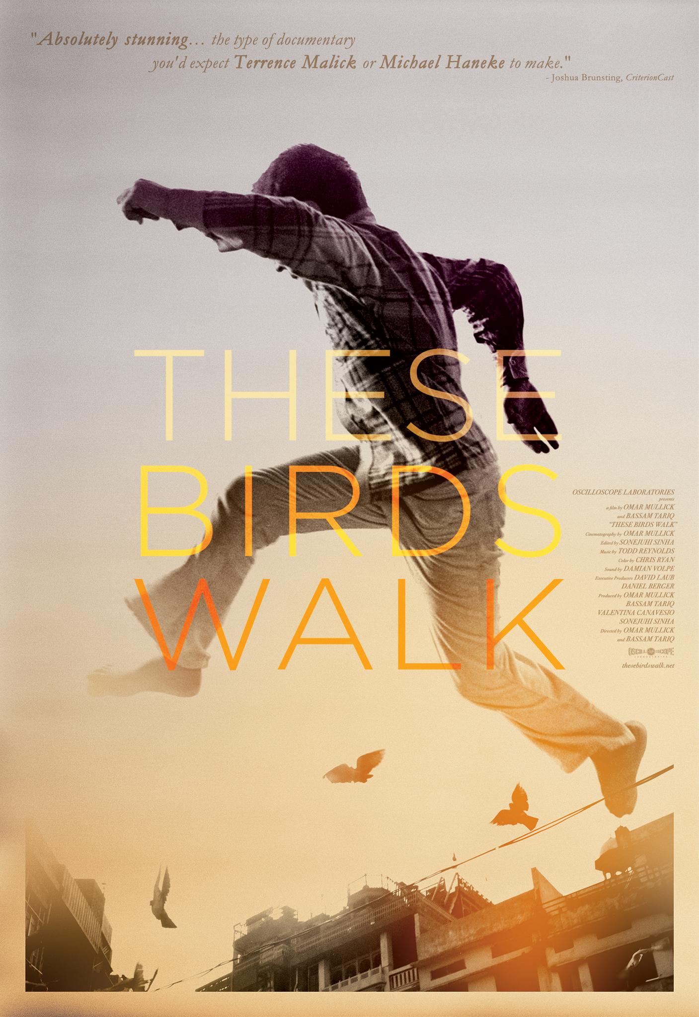 Bassam Tariq – These Birds Walk